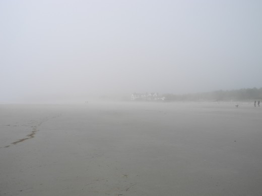 A foggy morning on Parsons Beach, ME