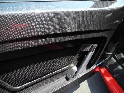 Carbon Fiber Door Panels
