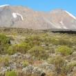 Kilimanjaro – Part I