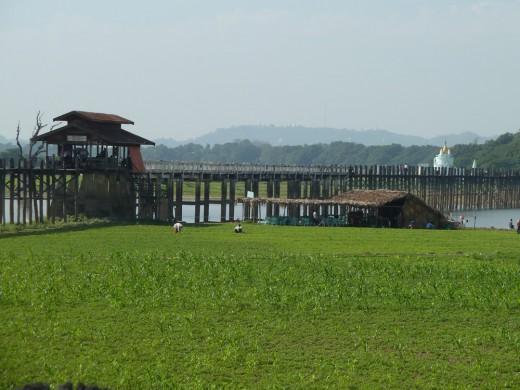 A view of U Bein's Bridge.