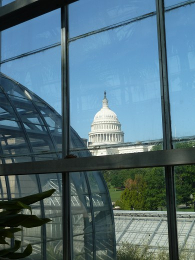 The Capitol, as seen from the Botanic Garden.